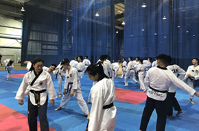 Historic Showing for Taekwondo at RMC
