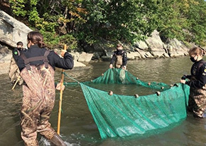 Cadets Catch & Release 127 Fish for Identification