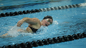 Swimming & Diving Sweeps Seton Hall on the Road