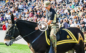 USAA Behind the Game: The Army Mule